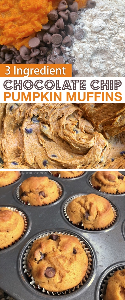 Looking for quick and easy pumpkin dessert recipes? These 3 ingredient chocolate chip pumpkin muffins are made with just spice cake mix, pumpkin puree and chocolate chips. Just 2 ingredients without the chocolate! The best simple fall treat and dessert idea! #instrupix #3ingredients