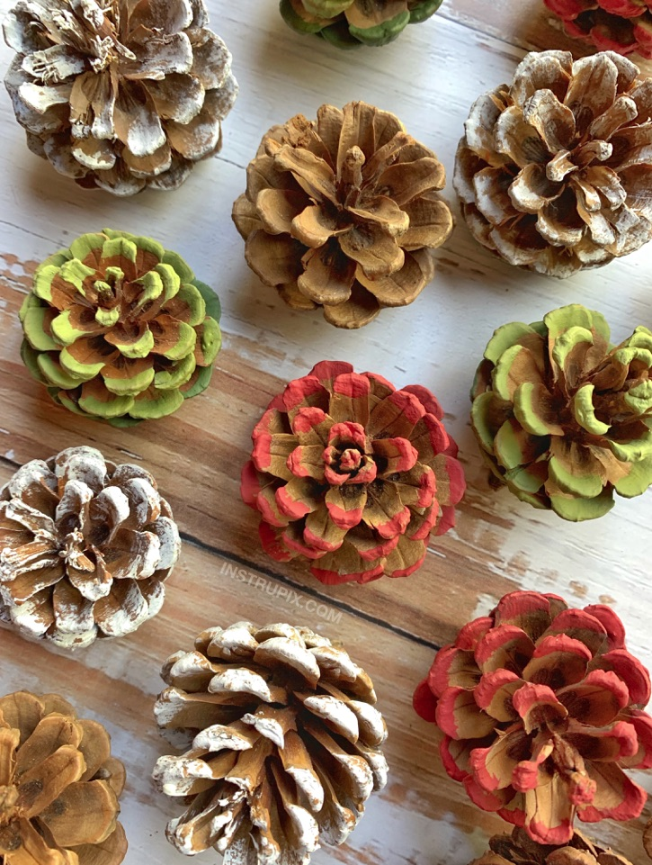 Easy Painted Pinecone Flowers With Stems
